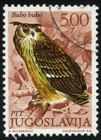 RUSSIA KALININGRAD, 12 NOVEMBER 2016: stamp printed by Yugoslavia, shows Eagle Owl, circa 1972