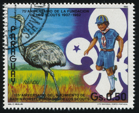 RUSSIA KALININGRAD, 22 APRIL 2017: stamp printed by Paraguay, shows Nandu (rhea) cub scout and trefoil, circa 1982 Editorial