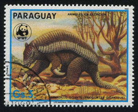 러시아 칼리닌그라드, 22 4 월 2017 : 스탬프 1970 년경 파라오, 쇼 priodontes giganteus 또는 거 대 한 딜, 인쇄