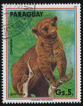 러시아 칼리닌그라드, 2017 년 4 월 22 일 : 스탬프 파라과이, 쇼 Martucha, 1989 년경에 의해 인쇄 에디토리얼