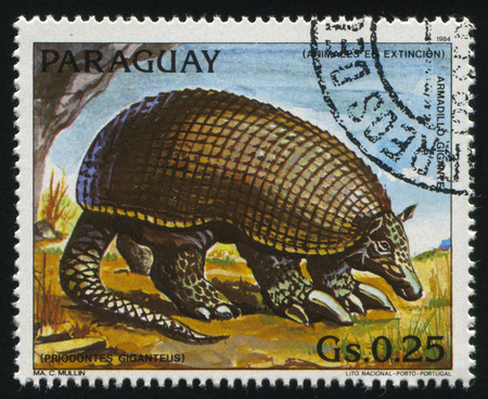 러시아 칼리닌그라드, 22 4 월 2017 : 파라과이, 쇼 priodontes Giganteus, 1984 년경에 의해 인쇄 된 스탬프