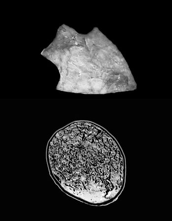 human evolution: ancient arrowhead and brain scan on black background - evolution concept  Stock Photo