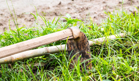 cultivation: Hoe digging tools for cultivation.