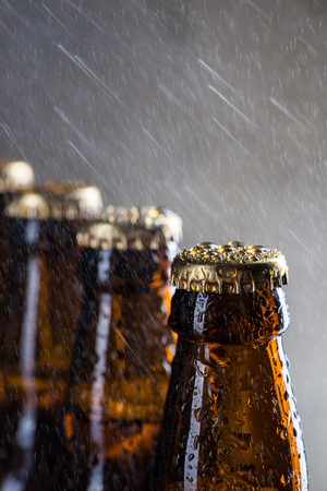 dewed: Ice cold beer bottles with drops of dew over the grey background