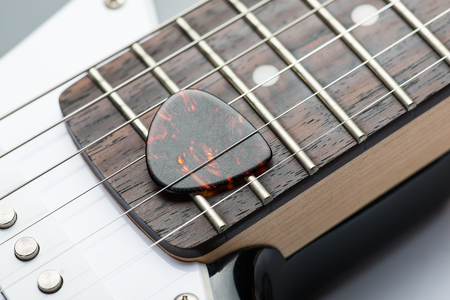 frets: Guitar frets with strings and mediator