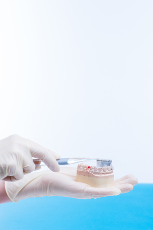 Doctor shows how to clean teeth Stock Photo