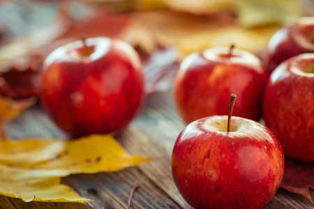 field maple: Red autumn apples with fallen leaves on wooden table