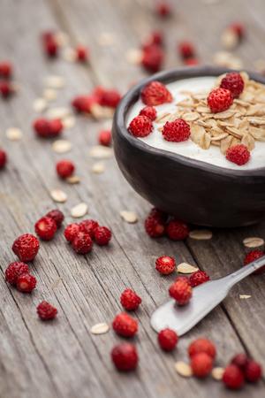 Yogurt. Stone bowl with fresh greek yogurt and berries