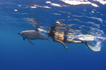 USA, Hawaii, Woman swimming with dolphin