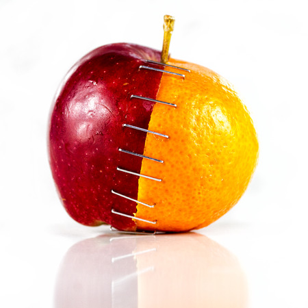 stapled: Apple and orange stapled together