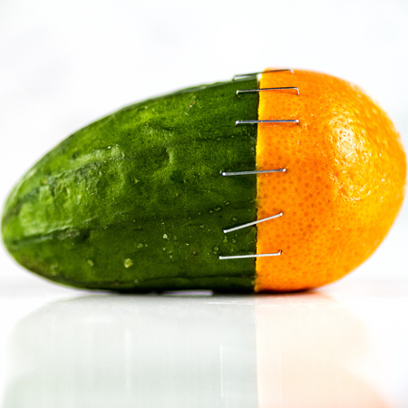 stapled: Orange and cucumber stapled together