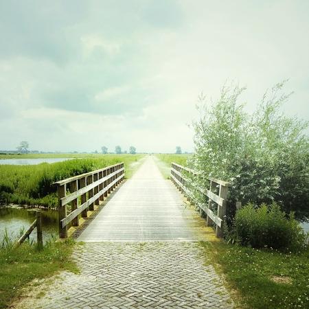 vanishing point: View of wooden bridge