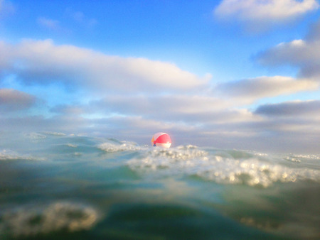 Beachball floating in sea LANG_EVOIMAGES