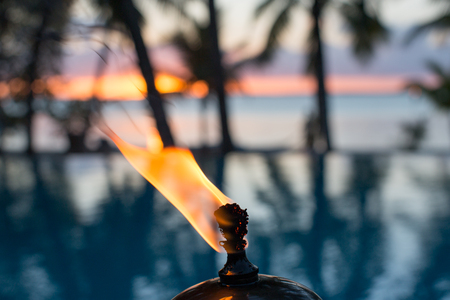 West Indies, Bahamas, Fire And Palm Trees