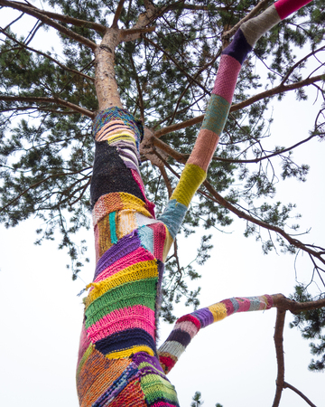 patchwork: Denmark, Odense, Yarn bombing on tree LANG_EVOIMAGES
