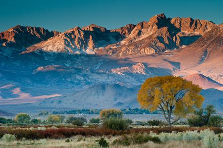 nevada: USA, Sierra Nevada Mountains at sunrise