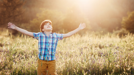 Boy (8-9) in meadow with arms outstretched looking up LANG_EVOIMAGES