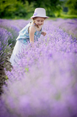 Small girl (4-5) in lavender field