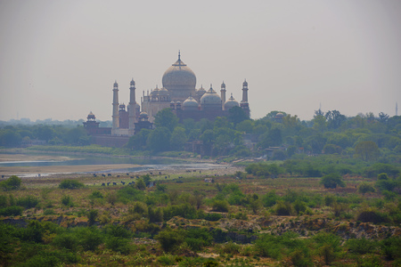 mughal empire: Taj Mahal seen from Agra Fort, Agra, India
