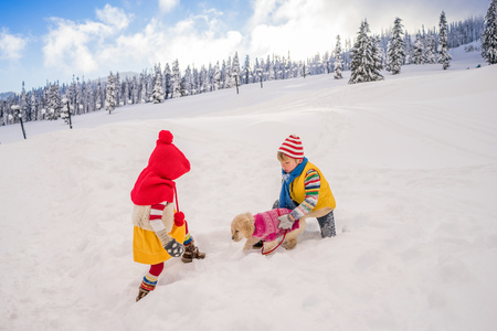 Boy and girl playing with golden retriever puppy dog in snow LANG_EVOIMAGES