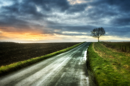 Road through rural landscape, Warwickshire, England, UK LANG_EVOIMAGES