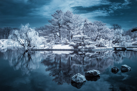 Infrared Forested Island reflected in lake, Illinois, America, USA LANG_EVOIMAGES