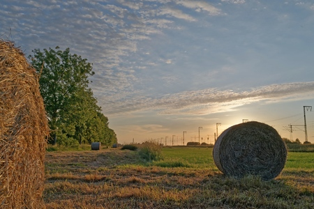 Hay bales in a field, Lower Saxony, Germany LANG_EVOIMAGES