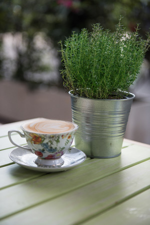 Cappuccio in floral teacup next to thyme plant LANG_EVOIMAGES