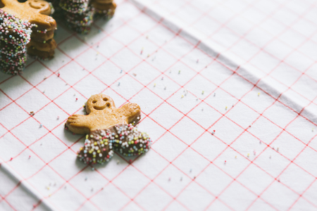 Gingerbread man with chocolate and sprinkles LANG_EVOIMAGES