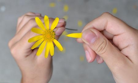 part of me: Manos de mujer tirando pétalos de una flor