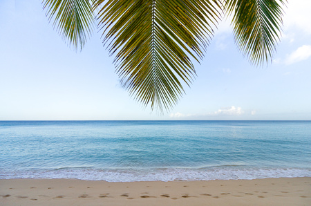 Footprints along beach, Barbados