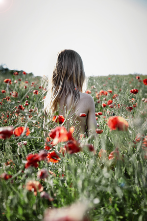 Rear view of a shirtless boy with long hair standing in a poppy field, Denmark