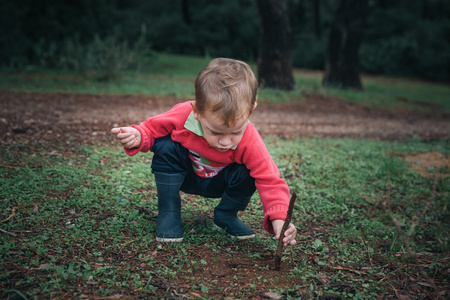 Boy looking for ants in the forest