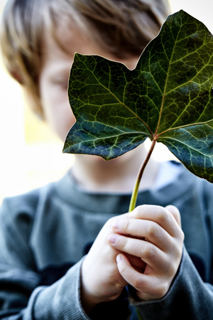 Boy holding a leaf in front of his face