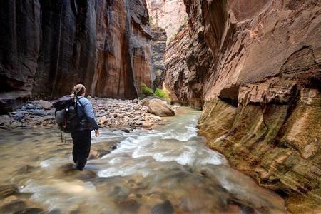 Hiker walking through river in the Narrows, Zion National Park, Utah, America, USA