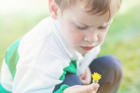 Boy picking a dandelion flower LANG_EVOIMAGES