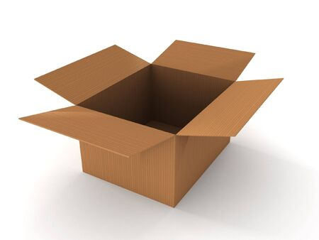 Open cardboard box isolated on white background. High quality 3d render. Stock Photo - 7295903