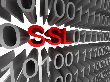 SSL in the form of binary code isolated on white background. High quality 3d render. Stock Photo