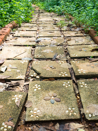 flagstone: Flagstone walkway with plant