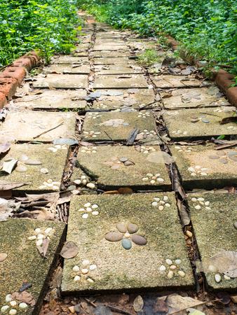 flagstone: Flagstone walkway with plant