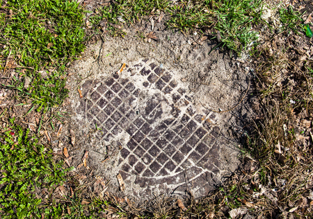 Manhole with metal cover sunk into the ground and grass  photo