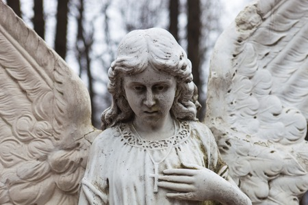 crannied: Old cemetery marble sculpture of the angel.