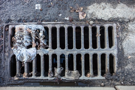 Drain grate with the garbage on it photo