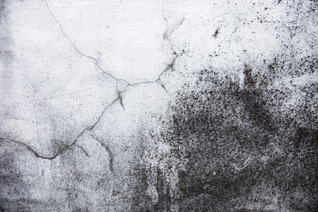 spattered: Whitewashed wall with rich and various texture.