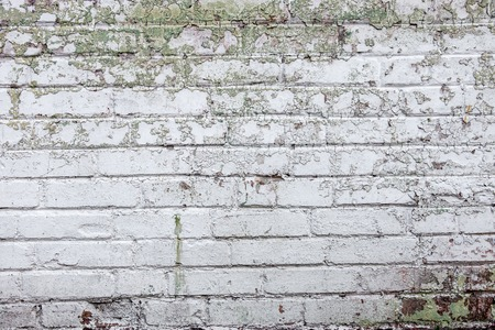 spattered: The old whitewashed brick wall with rich texture.