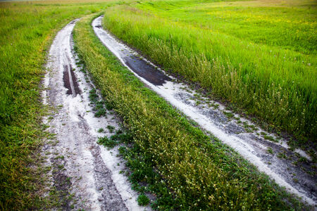rut: Dirt road in the green summer field. Stock Photo