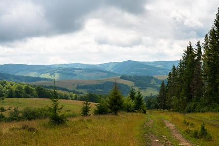 Dirt road against the summer landscape in the Ukrainian Carpathian Mountains photo