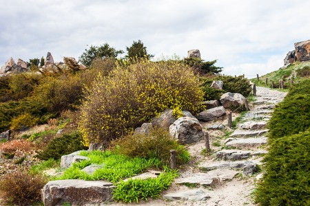 Stony stairs in the rockery in Kyiv botanical garden. photo
