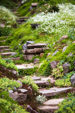 landscape garden: Stony stairs in the green blooming garden.