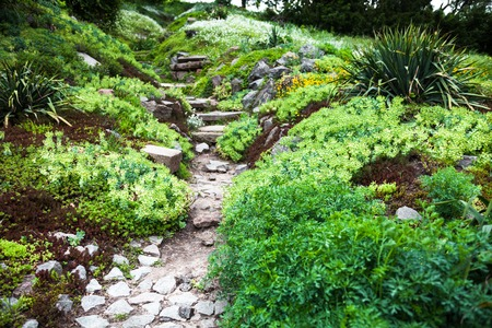 Stony path and stairs in the green blooming garden. photo